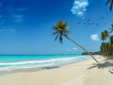 beach_splash